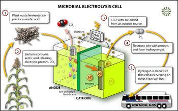 Mikrobní elektrolytické články (MEC)
