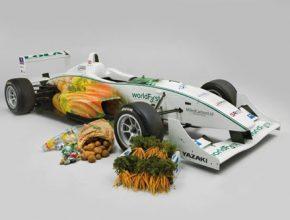 závodní automobily - Formule 3 týmu Worldfirst Racing
