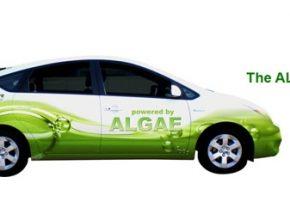 Toyota Prius Algaeus - plug-in hybridní auto na biopalivo z mořských řas