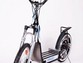Perut – Personal Urban Transporter. Na obrázku model Perut City.