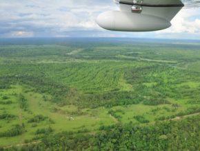 auto Peugeot ONF amazonský prales uhlíkový rezervoár