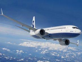 Už v blízké budoucnosti budou dopravní letadla létat na biopaliva.