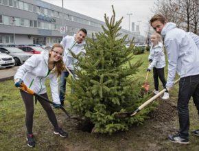 auto Škoda Auto výsadba stromů