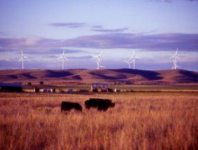 auto větrné elektrárny turbíny Texas