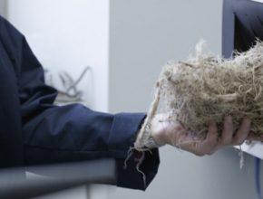 auto Ford polotovar agáve pro výrobu bioplastů