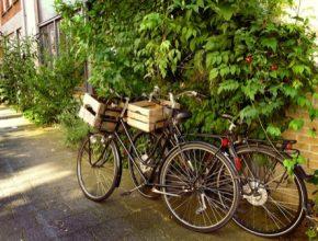 auto jízdní kola bicykly