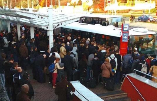 Trolejbusy cestujícím i místním obyvatelům uleví výrazně dříve a navíc bude infrastruktura moci být následně využita pro prodloužení tramvajové tratě z Divoké Šárky na Dědinu.