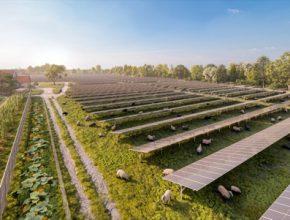 Nová fotovoltaická solární elektrárna o výkonu 11,5 MW má zásobit celkem 15 200 domácností.