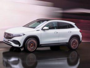 Podle statistiky registrací Svazu dovozců automobilů si plug-in hybridní vůz značky Mercedes-Benz koupilo 237 zákazníků, což je nejvíce v prémiovém segmentu a druhý nejlepší výsledek absolutně.
