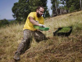 výsadba horských luk ve spolupráci s ČSOP Salamandr. Financováno z programu Radegast lidem 2020.